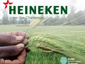 Heineken Joins the Challenge 2020